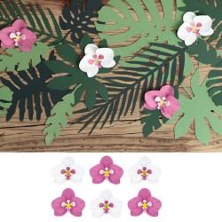 6 Orchidées pour décoration de table tropicale exotique
